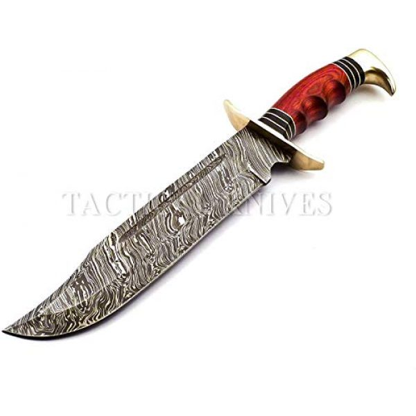 Bladess Fixed Blade Survival Knife 7 Damascus Steel Hunting Knife - Fixed Blade Knives with Sheath - Hunting Knife with Beautiful Bull Horn Handle Hand Made Damascus Knife for Hunting, Camping. Survival and Tactical