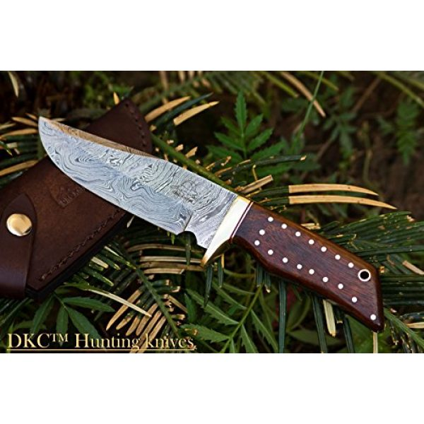 """DKC Knives Fixed Blade Survival Knife 1 (14 5/18) DKC-500 Cougar Damascus Steel Bowie Hunting Knife 9"""" Long, 4"""" Blade 7.4 oz ! Rosewood Handle"""