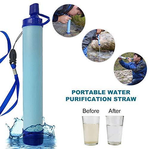 Puimentiua  1 Puimentiua Straw Filter