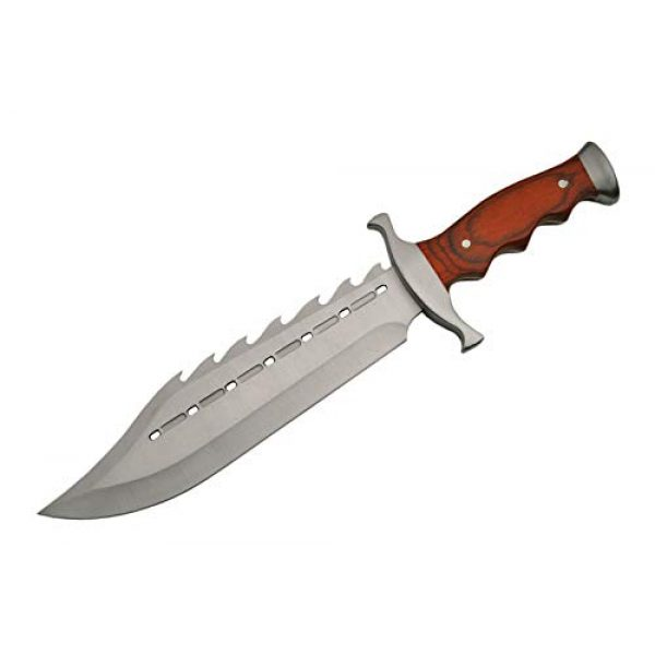 SZCO Supplies Fixed Blade Survival Knife 2 SZCO Supplies 211398 Gator Back Bowie Knife Stainless Steel Skinning Knife