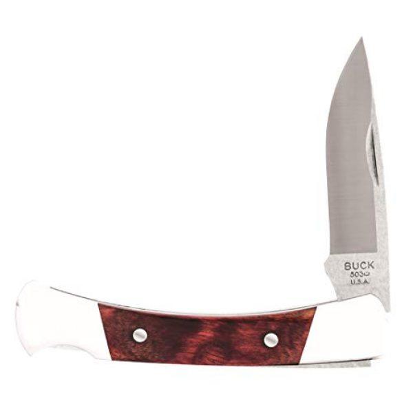 Buck Knives Folding Survival Knife 3 Buck Knives 503 Prince Folding Pocket Knife