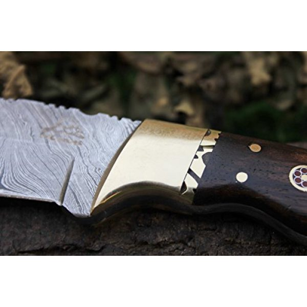 "DKC Knives Fixed Blade Survival Knife 6 15 4/4/18 Sale DKC-523 Gold Finch Damascus Hunting Handmade Knife Fixed Blade 9oz oz 8""Long 3.75"" Blade"