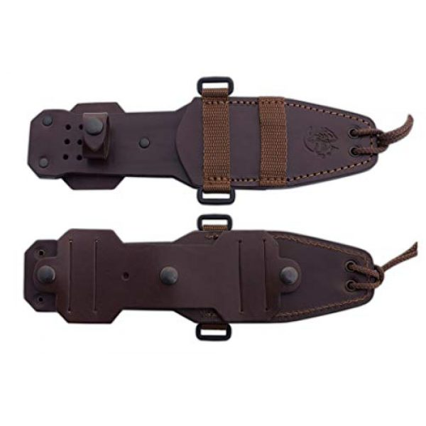 Cuchillos de Aventura J&V Fixed Blade Survival Knife 3 Survival knife CELTIBERO 2.0 Full Tang J&V with natural cocobolo wood handle, Hunting Knife with blade of 4.92 inches and brown leather sheath, Camping Tool for Fishing, Hunting, Sport Activity
