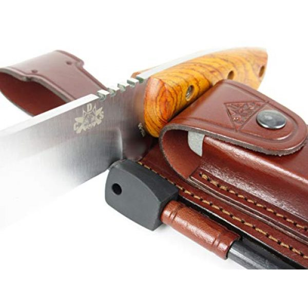 CDS-Survival Fixed Blade Survival Knife 3 CELTIBEROCOCO - Outdoor / Survival / Hunting / Tactical Knife - Cocobolo Wood Handle, Stainless Steel MOVA-58 with Genuine Leather Multi-positioned Sheath + Sharpener Stone + Firesteel
