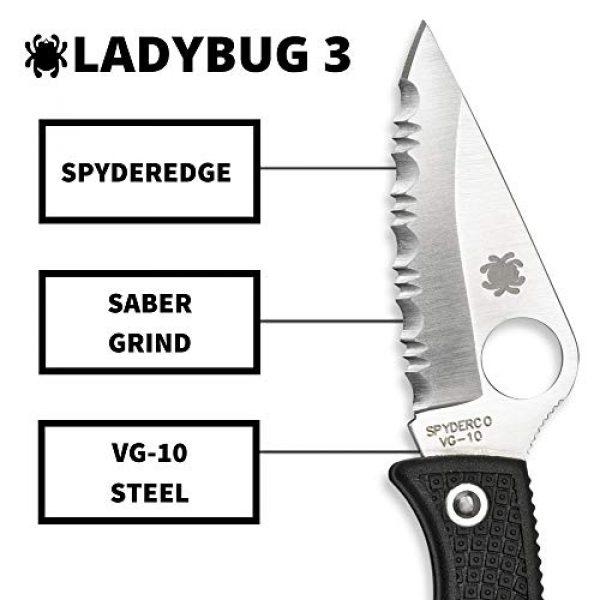 "Spyderco Folding Survival Knife 3 Spyderco Ladybug 3 Signature Folding Knife with 1.9"" VG-10 Steel Blade and Lightweight Black FRN Handle - SpyderEdge - LBKS3"