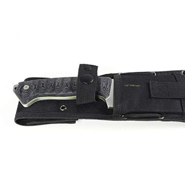 iFIELD Fixed Blade Survival Knife 5 iFIELD Survival Knife Workout MOVA Satin Blade, Includes Leather Sheath, Flint and Sharpening Stone, Survival Knife, Camping Tool for Fishing, Hunting, Sport Activity