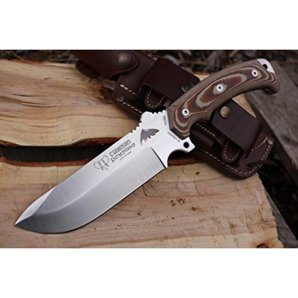 Cudeman Fixed Blade Survival Knife 5 Cudeman Survival Knife ENTRESIERRAS 155-XC MOVA with Brown Leather Sheath, Sport Use, Complete Kit, Camping Tool for Fishing, Hunting, Sport Activity + Multi-Purpose Gift Card