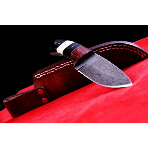 Nescole Fixed Blade Survival Knife 3 Nescole 8 in. Bowie Knife- Handmade Damascus Knife- Decorative Knives, Camping Survival Knife, and Hunting Knife with Camel Bone and Walnut Wood Handle, 4 in. Sharp Blade with Leather Sheath