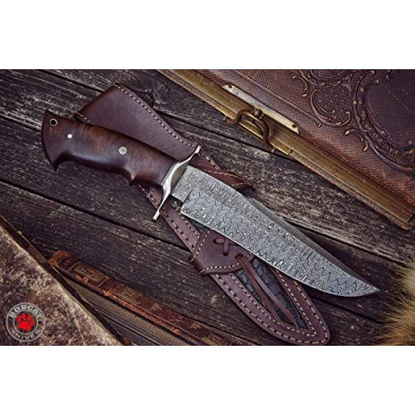 Bobcat Knives Official Fixed Blade Survival Knife 3 Bobcat Knives - 13-inch Overall, Raptor Hunting Bowie Knife - Full Tang Fixed Blade Damascus Steel - Walnut Wood Handle with Leather Sheath