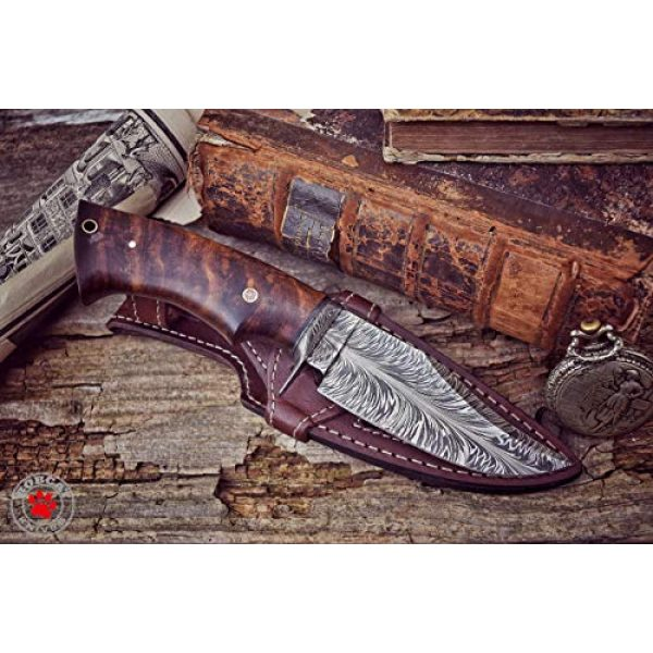 Bobcat Knives Fixed Blade Survival Knife 2 Bobcat Knives -10-inch Overall, Bladesmith Pride, Hunting Bowie Knife - Full Tang Fixed Blade Damascus Steel - Walnut Wood Handle with Leather Sheath