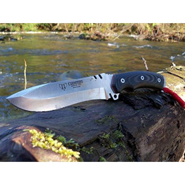 Cudeman Fixed Blade Survival Knife 4 Cudeman Survival Knife 291-M Model Boina Verde Cadet, Blade of 5.9 inches, Black micarta Handle, Sport use, Camping Tool for Fishing, Hunting, Sport Activity + Multifunction Gift Card