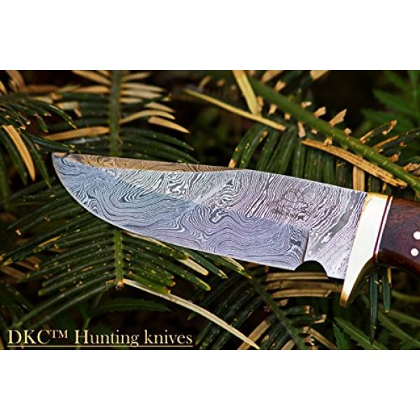 """DKC Knives Fixed Blade Survival Knife 3 (14 5/18) DKC-500 Cougar Damascus Steel Bowie Hunting Knife 9"""" Long, 4"""" Blade 7.4 oz ! Rosewood Handle"""