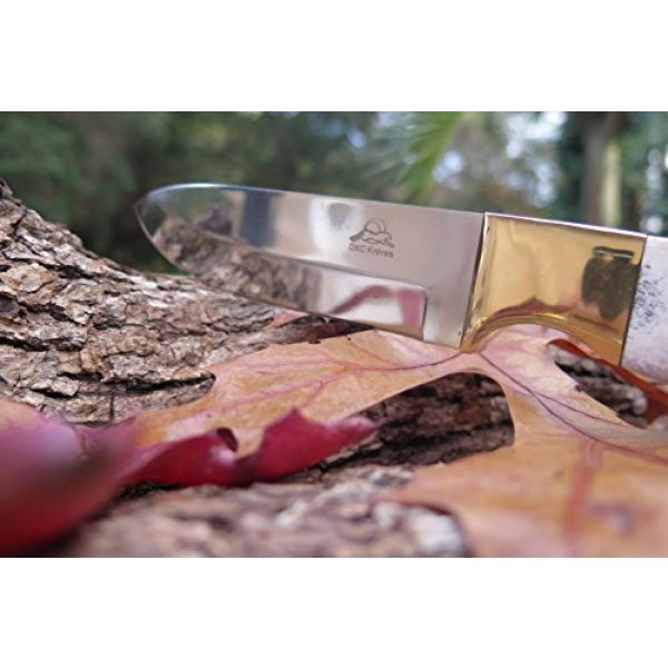 """DKC Knives Fixed Blade Survival Knife 6 (1 6/18) DKC-724-440c STAG Guard Stainless Steel Stag Horn Custom Handmade Hunting Handmade Knife Fixed Blade 10 oz 9.5"""" Long 4.5"""" Blade"""