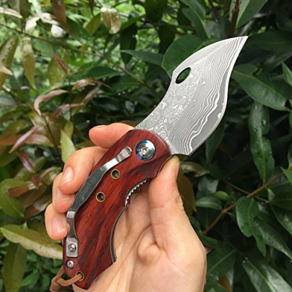 ALBATROSS Folding Survival Knife 4 ALBATROSS HGDK003 Sharp VG10 Damascus Folding Pocket Knife with Liner Lock, Yellow Sandalwood Handle, Gifts/Collections