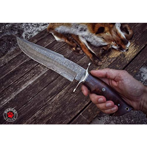 Bobcat Knives Official Fixed Blade Survival Knife 2 Bobcat Knives - 13-inch Overall, Raptor Hunting Bowie Knife - Full Tang Fixed Blade Damascus Steel - Walnut Wood Handle with Leather Sheath