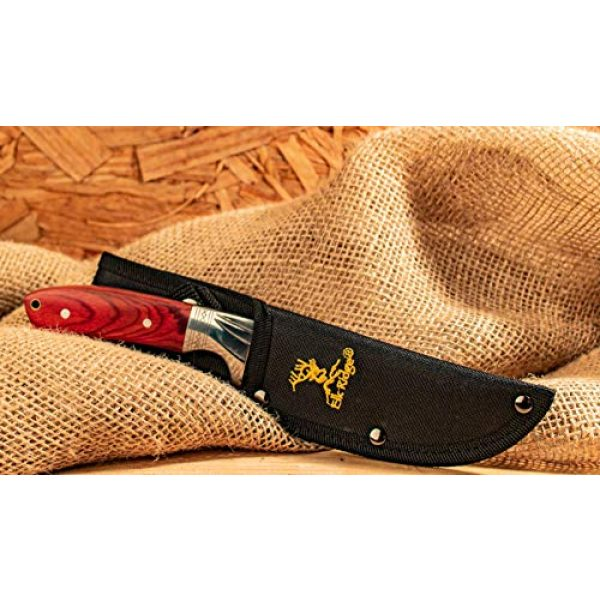 Elk Ridge Fixed Blade Survival Knife 3 Elk Ridge - Outdoors Fixed Blade Knife - 9-in Overall, Mirror Finish Stainless Steel Blade, Brown Wood Handle, Nylon Sheath - Hunting, Camping, Survival - ER-148