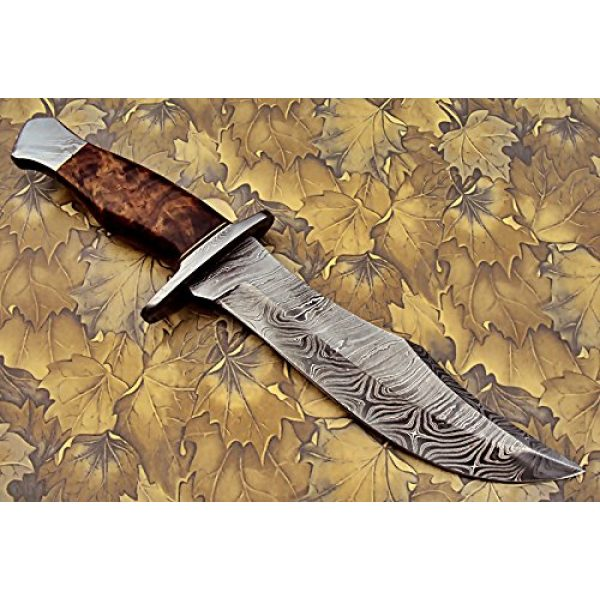 Poshland Fixed Blade Survival Knife 5 REG-274, Handmade Damascus Steel 13.00 Inches Hunting Knife - Rose Wood with Damascus Steel Guards Handle