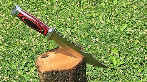 Razor Sharp 420 SS Rust Free Full Tang Fixed Blade by