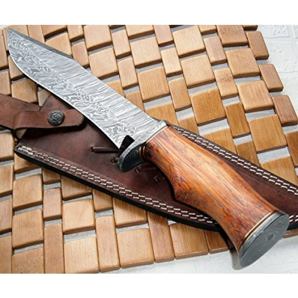 Poshland Fixed Blade Survival Knife 3 REG-215 - Handmade Damascus Steel 14.00 Inches Bowie Knife - Exotic Wood Handle (Color/Case Vary)