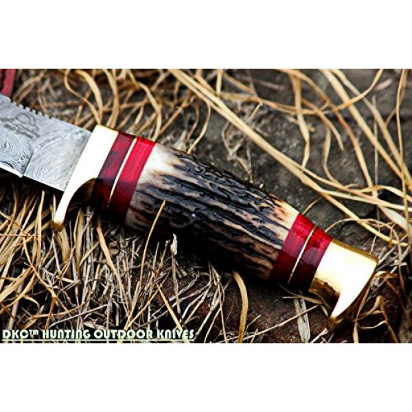 """DKC Knives Fixed Blade Survival Knife 2 DKC Knives (24 5/18) DKC-717 Bald Eagle Damascus Bowie Hunting Handmade Knife Stag Horn Fixed Blade 9.8oz 10"""" Long 5"""" Blade"""
