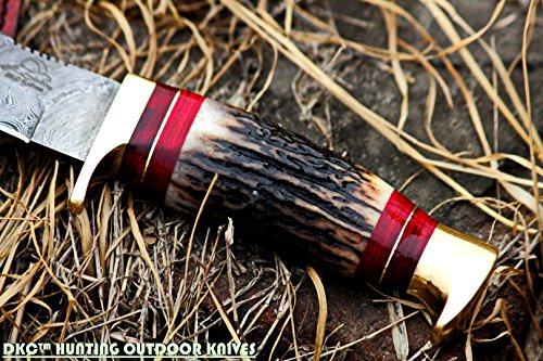 """DKC Knives  2 DKC Knives (24 5/18) DKC-717 Bald Eagle Damascus Bowie Hunting Handmade Knife Stag Horn Fixed Blade 9.8oz 10"""" Long 5"""" Blade"""